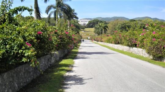 Jamaica 2013_069 (2)