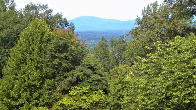 Monticello_071
